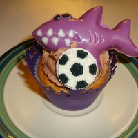 Shark Cupcakes For Soccer Team Homemade Chocolate Sharks in the team colors. Hand Cut Wrappers of families. White Chocolate Cake w/Chocolate Chips and Chocolate...