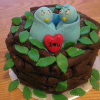 Love Birds Nest!! Thanks to many cakes on CC for inspiration!!!
