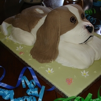 Dog Cake I made this cake for my 2 year old daughter as she was really into dogs at the time. The only problem was that she didn't want to eat...