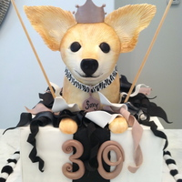 Chihuhua Birthday Cake 30th Birthday cake with clients dog popping out of a present, RKT dog, all other deco's are fondant