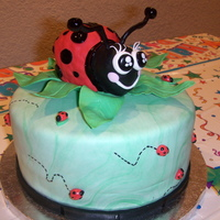 Ladybug's Out And About.... Made this cake in 24hrs for my daughter's birthday,who absolutely loves LadyBugs :) . Ladybug is RKT and all decoration is Fondant....