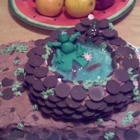Frog Pond Cake White cake with chocolate buttercream frosting. I used candy melts for pond & made frog from fondant. Made for a friend at work. I was...
