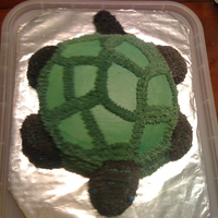 Turtle My turtle cake was for my wilton class and practicing the star tip. I hand carved the turtle and it took FOREVER to cover in those silly...