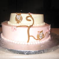 Baby Shower Owl Cake Uneven i know - Practicing
