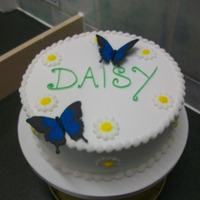 Daisy royal iced cake