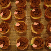 Chocolate Rose With Pink Rosebud   Chocolate buttercream rose , tip 2D, covers top, with a royal icing pink rosebud.