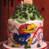 Jayhawk On The Hill For my son's birthday.. He's a huge KU fan...even at 2. He freaked out when he saw it