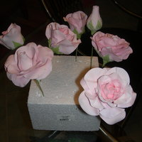 My First Gum Pasteroses Made in my first rose class. I am in love with gum paste and can't wait to learn how to make more floweres.Thank you for taking a look...