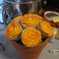 My First Attempt @ Cupcake Bouquet This was my first attempt at a Cupcake Bouquet I didnt finish the flower pot off like I wanted but overall I think it came out great!!