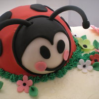 Ladybug And Flowers White cake with Italian cream and raspberry filling. Cake is covered in Italian buttercream. Fondant covered ladybug and accents. Bug idea...