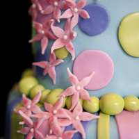 Whimsical Birthday This cake was a whimsical cake I did for a little girl, Ashlynn. It is decorated with MMF decor. TFL!!