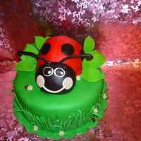 Another Ladybug Cake   This is my version of a very popular cake!