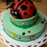 Ladybug Birthday Cake This was a birthday for my sister who loves ladybugs. The cake is a chocolate cake, with a chocolate mousse filling. The frosting is an IMB...