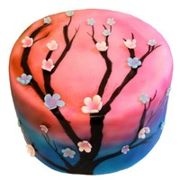 Pink And Blue Airbrushed Cherry Blossom Cake This is a 7 inch by 3 inch cake that I covered in fondant and then airbrushed, using mostly pinks and blues. Then I handpainted the black...