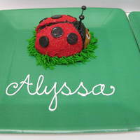 "Ladybug Smash Cake Baked in the Williams Sonoma ""Backyard Bugs"" pan - it's about the size of a jumbo cupcake. Red buttercream covered with red..."