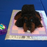 Puppy Cake This cake was made for my daughter's birthday to resemble our king charles cavalier Rascal. It was carved from 2 10-inch round cakes...