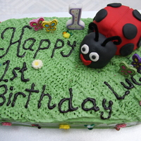 Lucy Ladybug All the previous cakes I made were practice for this one, my daughters 1st birthday. There was a minor disaster when the ladybug started to...