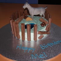 Shannon The Goat In His Pen I made this for my partner's 36th birthday. It's a choc mud cake with buttercream icing, jelly pool, coconut grass, flake logs...