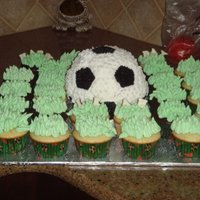 Soccer A soccer ball surrounded by a 'field' of cupcakes. I used the wilton ball pan, I just wish I would have had the grass tip. I didn...