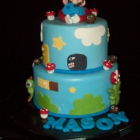 Super Mario Brothers Cake I had never made a gumpaste figure before this cake and I'm not in a hurry to do it again...LOL...8 inch is white chocolate cake/...