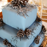 Blue Winter Wedding Cake With Pine Cones The cake is 3 different flavors, dirty iced with butter cream and then wrapped in ice blue fondant. The pine cones are made out of 2...