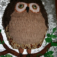 Owl   Marble pound cake. Buttercream icing on top and front, almond slices on sides and chocolate curls for wings. Fondant branch and leaves.