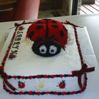 Ladybug Cake   Another view