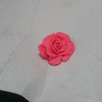 First Rose! Had never made a rose before. I used one of the tutorials (roses without cutters) that Rylan posted. Thanks Rylan!!
