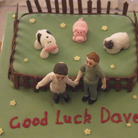 Vet's This cake was for a friend who was moving away with his newly qualified vet wife who was starting a new job.