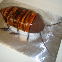 The Chocroach Cake! I made this cake for a local pest control company's display at a local home and garden show! It was so fun to make! I used Rose Levy...