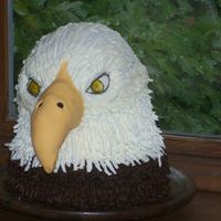 Son's Birthday Cake 16'' tall chocolate cake, with butter cream feathers and filling. beak made with rice crispies. but, next time ill use styrofoam...