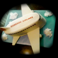 Airplane   9x13's carved and stacked. Covered with buttercream with all accents being fondant. Used white cotten candy for the clouds.