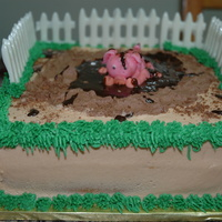 Pig Pen Smash Cake   the fence is white choco, the pig is mmf