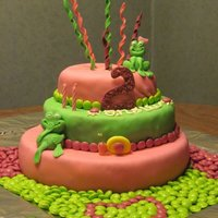 Anslie's 2Nd Birthday I made this cake for my daughter's 2nd birthday. Its only my second ever cake! Bottom layer was white cake tinted green, with pink...