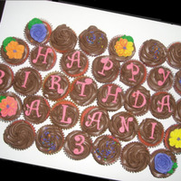 Happy Birthday Alani Pink cupcakes with chocolate icing and royal icing flowers and sprinkles