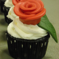 Aopi Cupcakes! Tried the rolled rose method using my circle cutters and I loved it! Great way to make simple roses fast