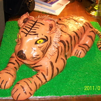 Tiger VEry hard work. Had to cover in 3 parts and then blend the seams. Not easy at all!!! Covered in fondant.