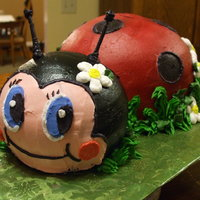 Ladybug This was made for a 5&6 year old girl's softball team. The father had seen a picture of a ladybug cake and wanted one made for the...