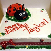 "Square Ladybug Cake! This lady bug cake is a 10"" square vanilla cake with buttercream icing. The tiny ladybugs are MMF, and the big ladybug is vanilla cake..."