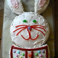 Easter Bunny I made this cake last Easter - 2009 - before I started trying Fondant. It was super fun and the kids loved it!