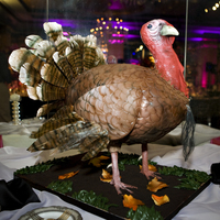 Turkey This turkey cake was a groom's cake for a celebrity client. All edible, right down to the painted rice paper feathers!