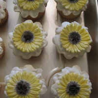 Retirement Party Cupcakes!  Vanilla bean cake with vanilla buttercream icing. The flowers (Dogwood and Daisy) are made with gumpaste. I made these for a co-workers...