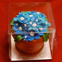 Flower Pot Mini Cake