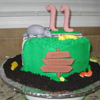 Armadillos, Slugs, Worms...oh My! Cake made for my neighbor's daughter's birthday. Her favorite animals are armadillos & banana slugs! Armadillo, slug, giant &...