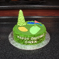 Golf Course Cake This cake was fun to make. The pine tree is royal icing. The sand pit is graham cracker crumbs and the water is blue piping gel.