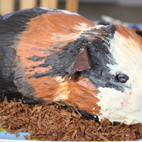 Guinea Pig Cake My sister loves Guinea Pigs and requested one for her birthday cake. This is decorated with frosting... no fondant on this cake.