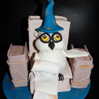 Wizard Owl Dummy Cake. Seen in a book.