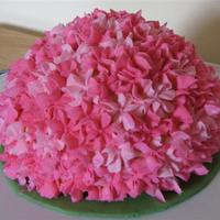 Pink Hydrangea 6 inch cake with 1/2 ball pan on top. All done in bc icing