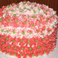 Pink & Green Flowers 4 layer WASC baby cake with all BC icing.
