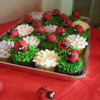 Lady Bug Cupcakes Chocolate and vanilla cupcakes with vanilla frosting for the grass, marshmallows for the flowers, and cake balls covered in chocolate...